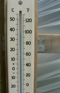 Temperature insdie a polytunnel