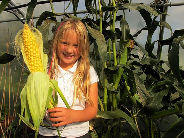 girl holding ear of sweetcorn