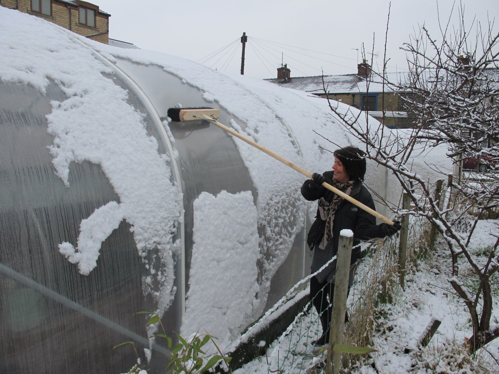 sweeping snow off a polytunnel with a long brush