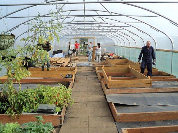 First Tunnels Polytunnels Polytunnel Gardening