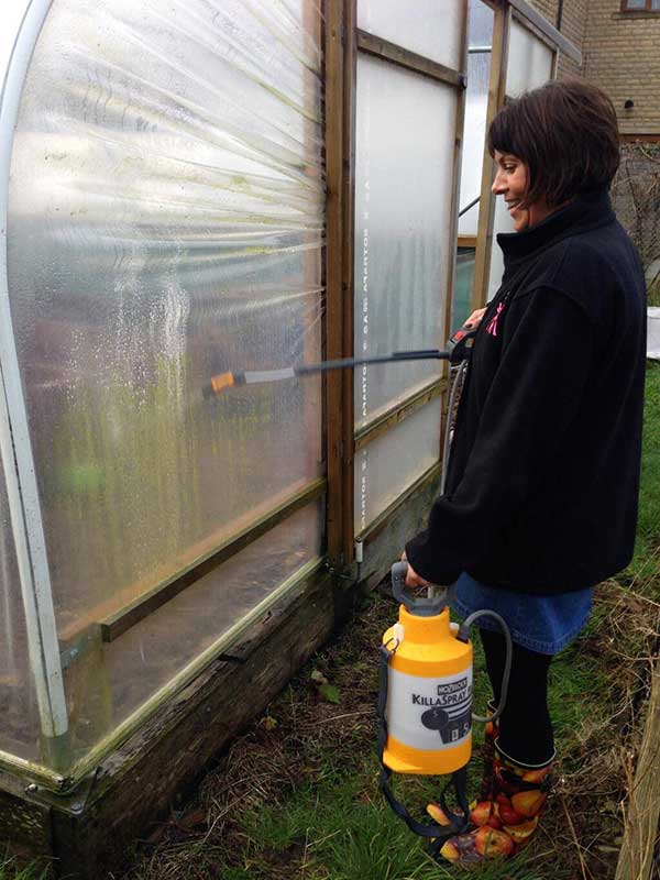 woman cleaning polytunnel