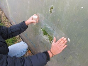 Polytunnel-Repair-Tape