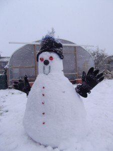 Snowman on allotment