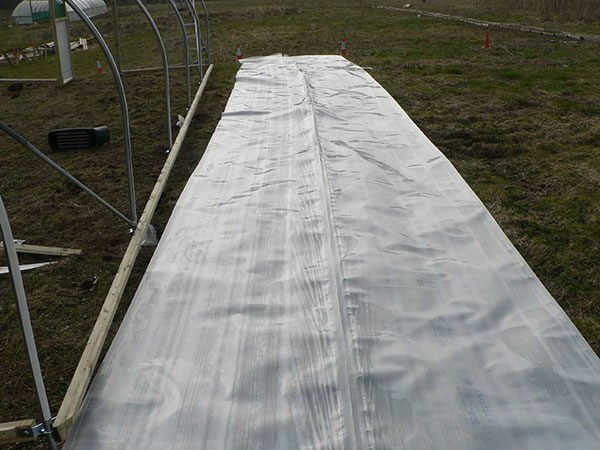 replacement polytunnel cover