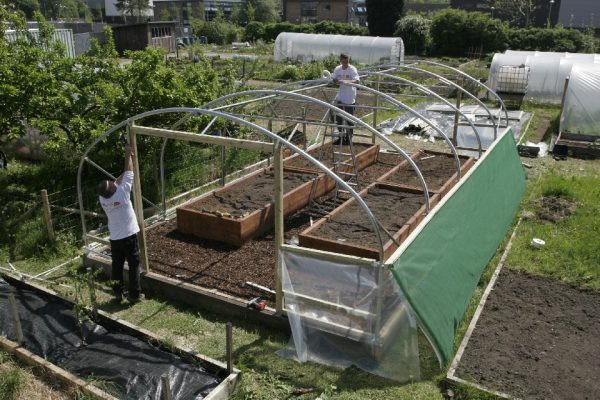 polytunnel halfway through construction