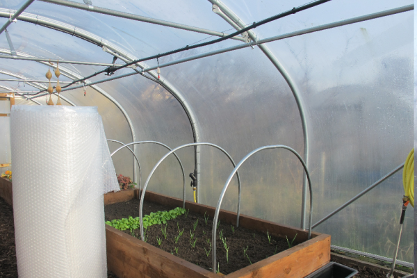 roll of bubblewrap inside a polytunnel