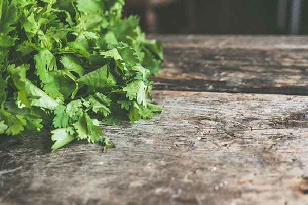 green fresh herbs on a wooden surface