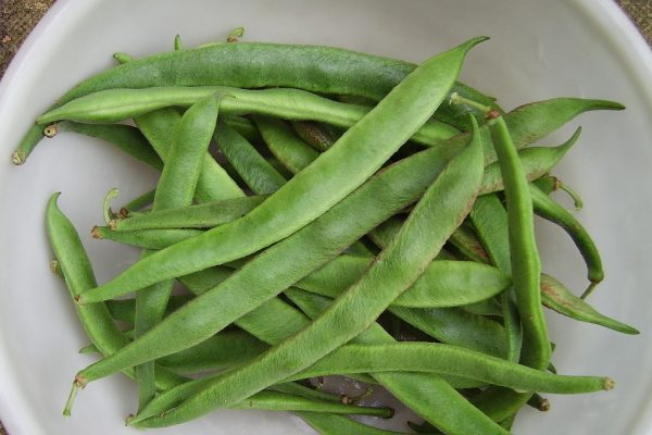 runner beans in a bowl