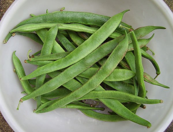 bowl of runner beans