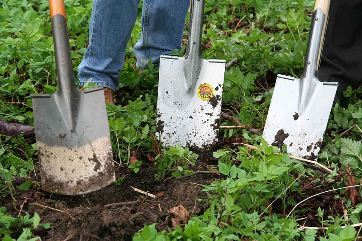 Allotment shovels