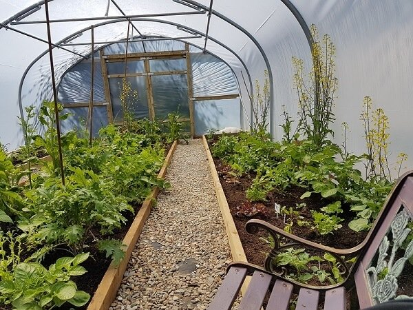 domestic polytunnel