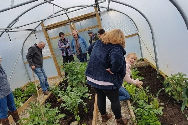 polytunnel gardeners