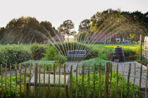 water feature in transformed garden
