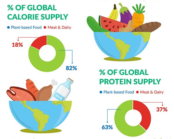 World's calorie supply