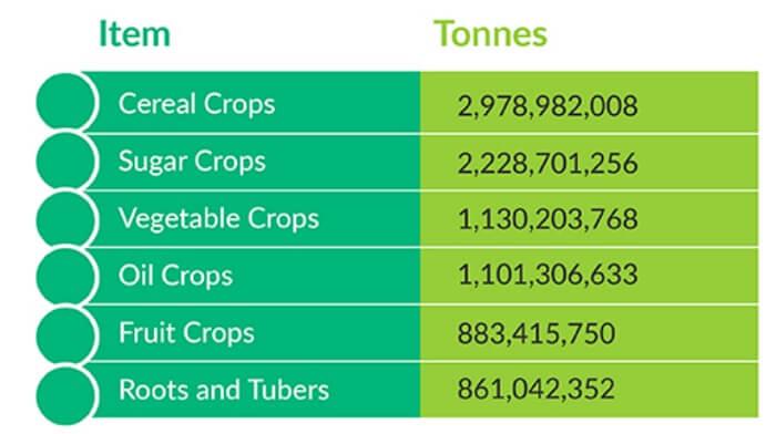 World crop categories
