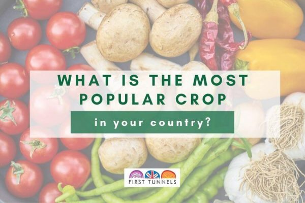 popular crops featured