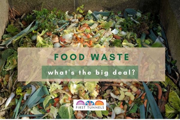 Food waste what's the big deal